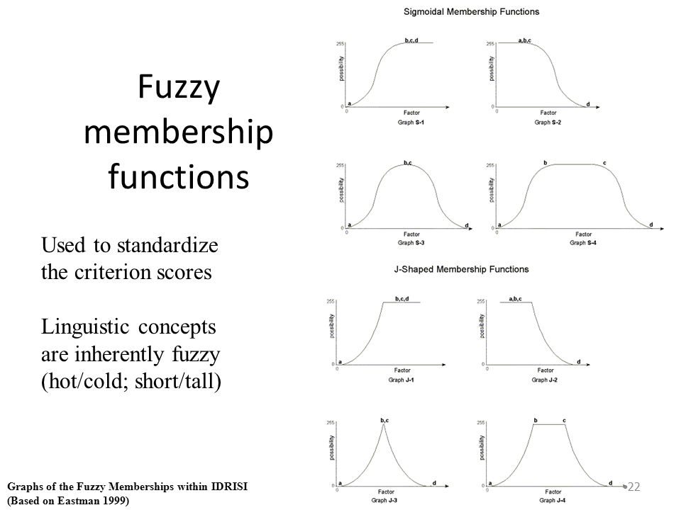 Fuzzy Function