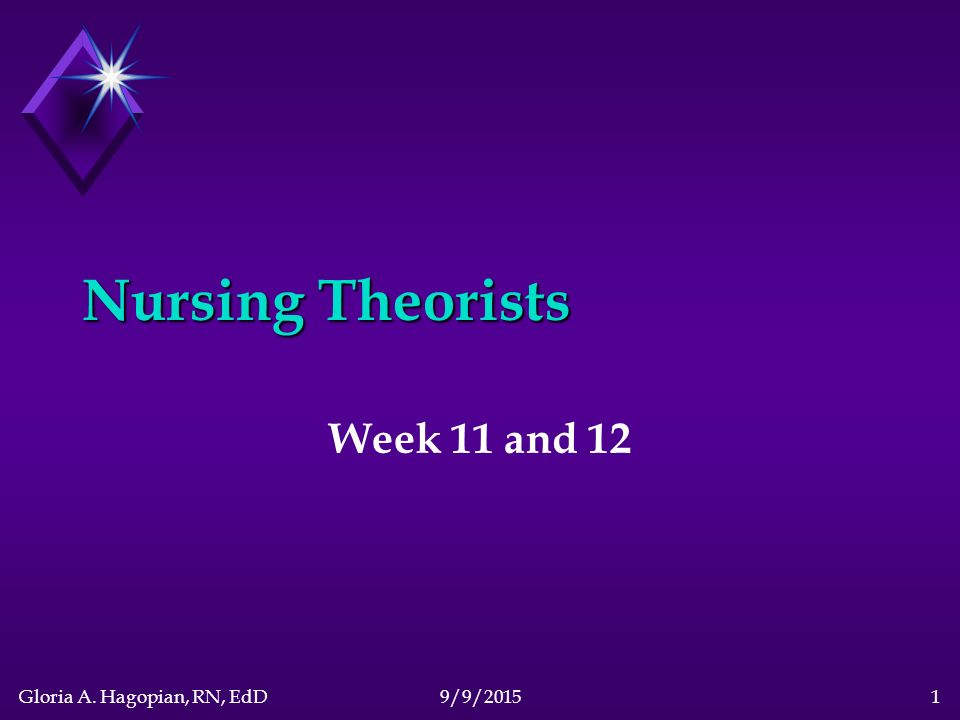 nursing theory and research essay