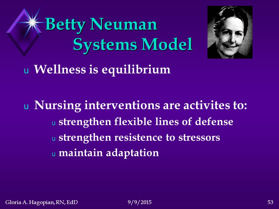 betty neuman systems model essay