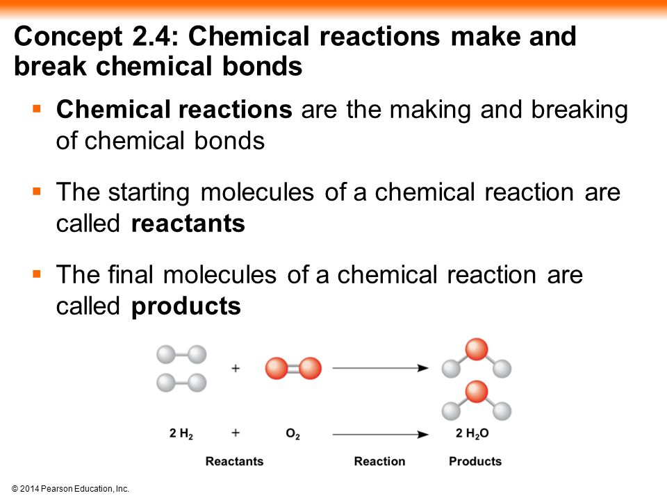 Concept 2.4: Chemical reactions make and break chemical bonds