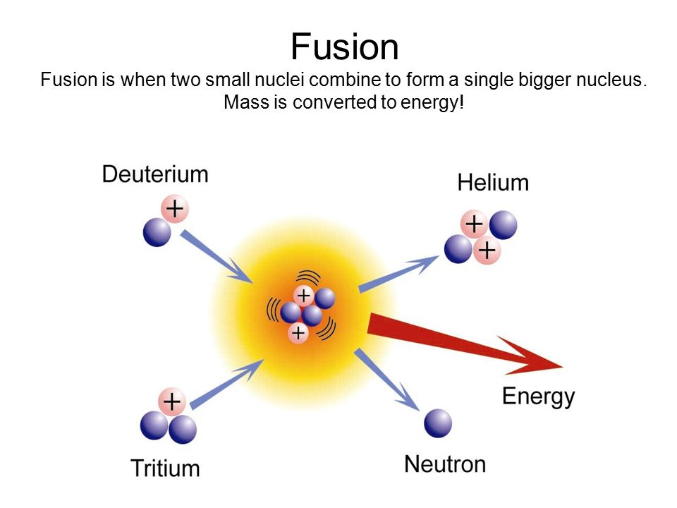 The Nucleus. - ppt video online download