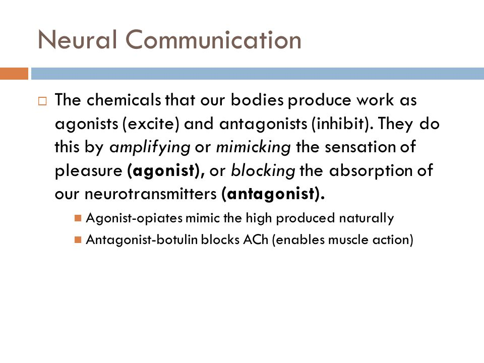 the influence of neurotransmitters on our body Neurotransmitters: their role in the body wwwrnorg® reviewed provider information and specifics available on our website influence almost the entire organ.