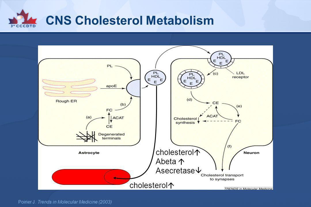 CNS Cholesterol Metabolism