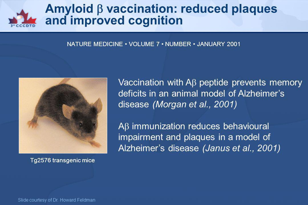 Amyloid  vaccination: reduced plaques and improved cognition