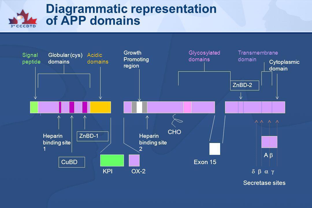 Diagrammatic representation of APP domains