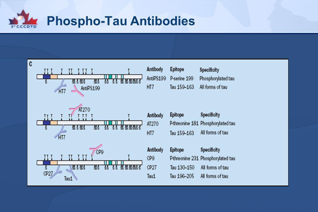 Phospho-Tau Antibodies
