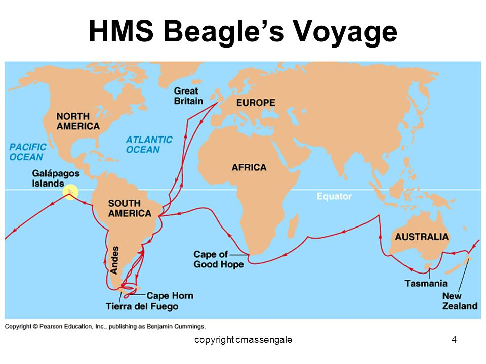Hms Beagle Voyage Natural History