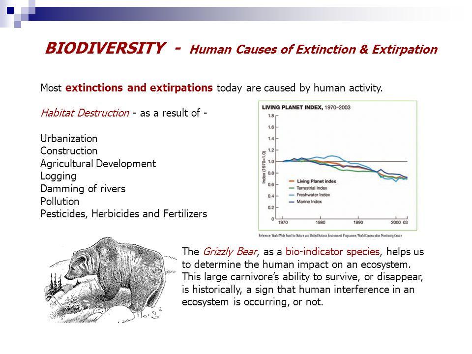 biological diversity biology powerpoint slideshow grade 9 science ppt download. Black Bedroom Furniture Sets. Home Design Ideas