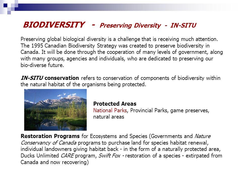 Ontario biodiversity strategy