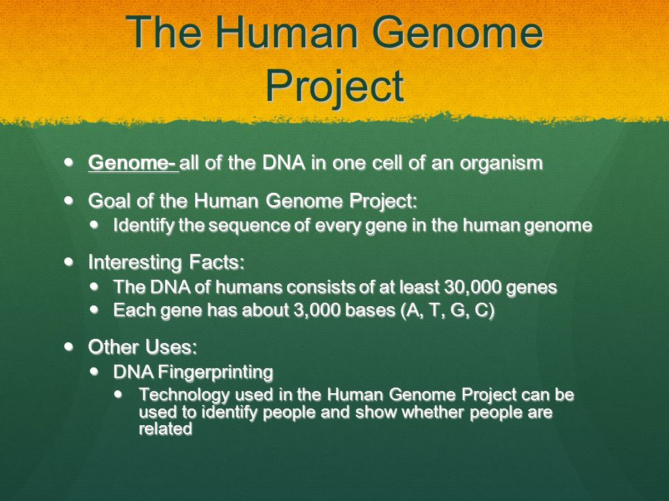 Timeline: The Human Genome Project