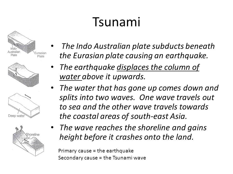 Tsunami The Indo Australian plate subducts beneath the Eurasian plate causing an earthquake.