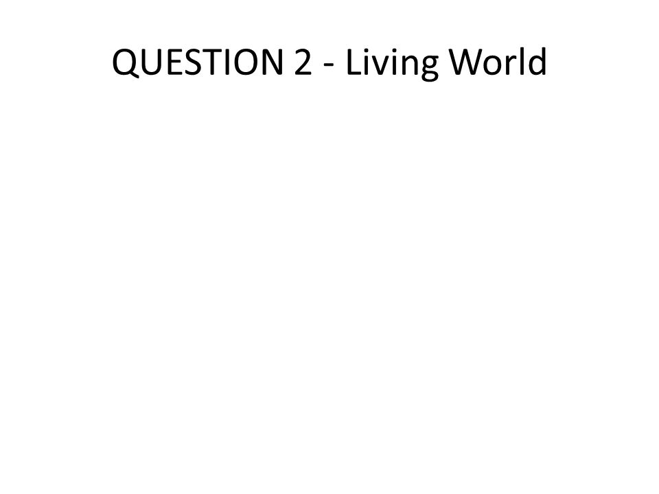 QUESTION 2 - Living World