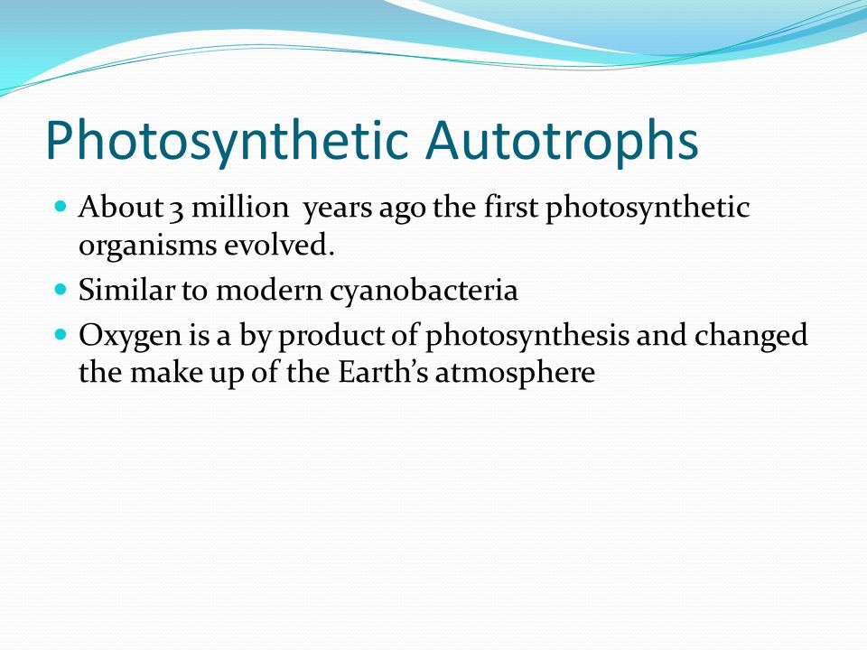 what is a chemosynthesis When discussing chemosynthesis vs photosynthesis, one important factor that distinguishes these two processes is the use of sunlight chemosynthesis occurs in darkness, on the seafloor, whereas, photosynthesis requires light energy from the sun to make food.