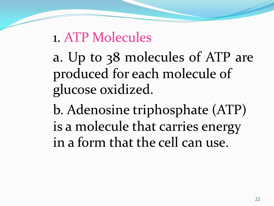 Chapter 4 Cellular Metabolism - ppt video online download
