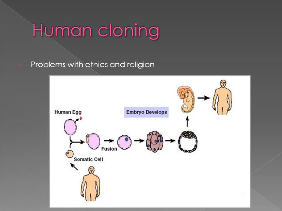 the human relation with god in various religions How is the concept of god different in christianity, islam, hinduism, buddhism to the god and religions are the human beings following different.
