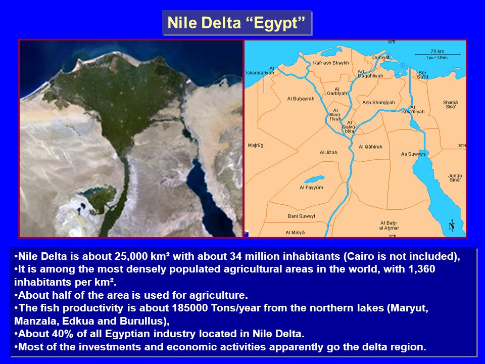 Problem Facing Nile Delta And The Challenges Ppt Video Online - Map of egypt nile delta