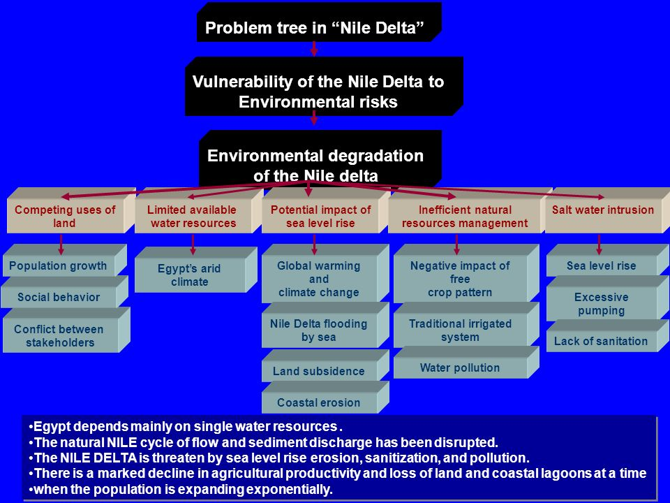 Problem Facing Nile Delta And The Challenges Ppt Video