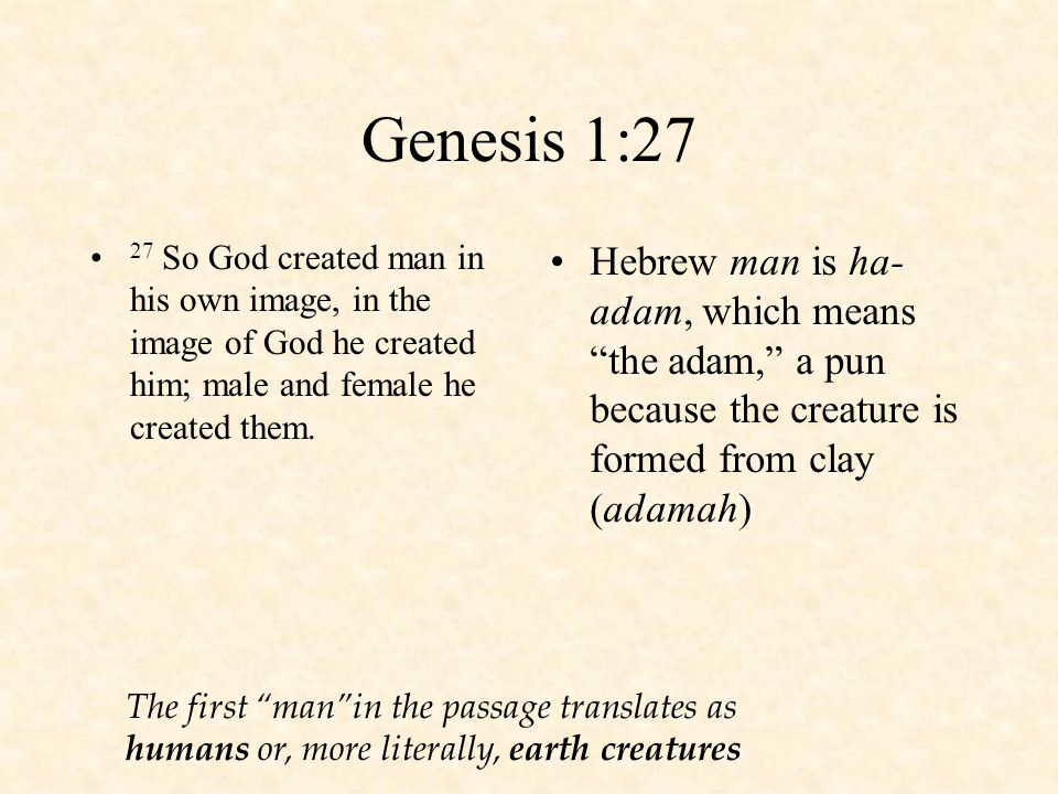 what it means to be human according to the passages in the bible What is the human spirit our spirit is the deepest part of our being and was created by god to contact and receive him note 5 on genesis 2:7 in the holy bible recovery version explains the meaning of the spirit in this verse.