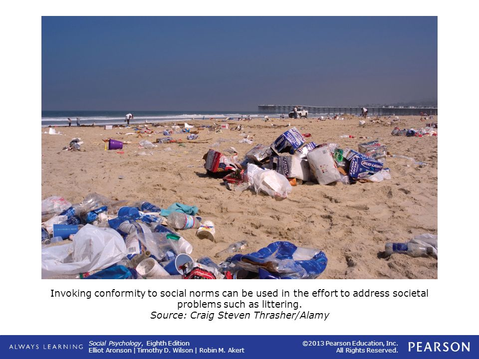 Invoking conformity to social norms can be used in the effort to address societal problems such as littering.