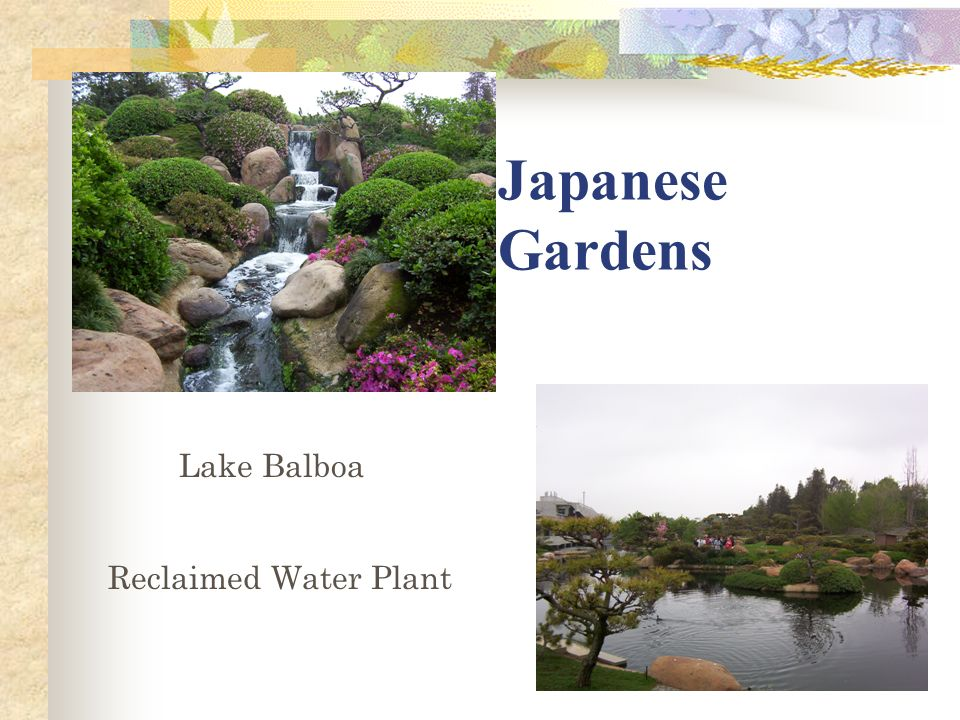 Canoga park high school ppt video online download for Japanese water garden plants