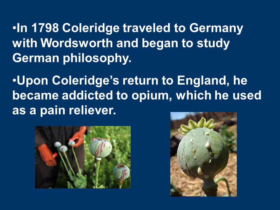 coleridge and wordsworth s poetry Did you know that william wordsworth, one of the best english poets of all time, felt strongly against the description of falsehood in certain poems, especially when it came to ossian's nature poetry.