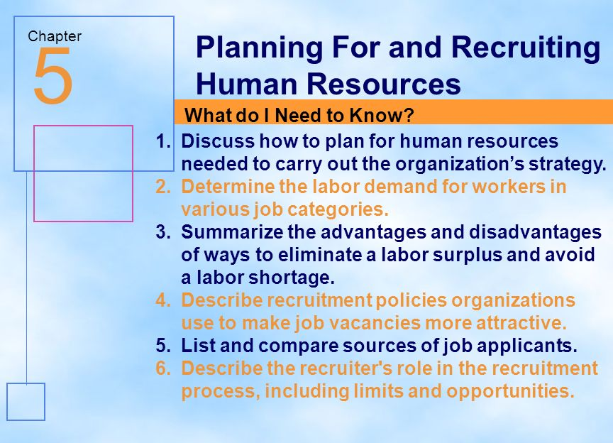 Importance of Human Resource Planning in Organizational Success