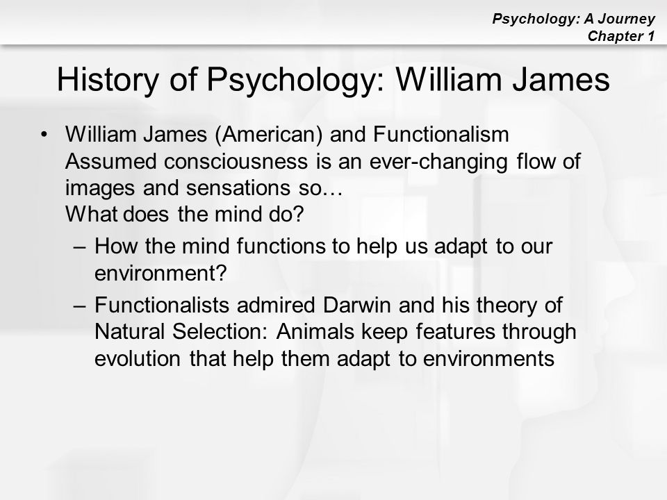 origin of the adlerian theory psychology essay Individual psychology was developed by alfred adler, an ophthalmologist and   adler's theory says we are motivated by goal-setting and purposeful behavior to  reach  to achieve this, a therapist will gather as much family history as is  available and learn  paper money, for example, is an emergent social  phenomenon.