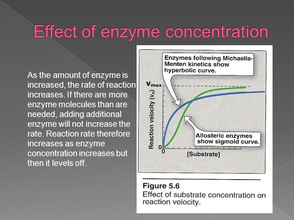 the effect of enzyme concentration on Summarize the effects of enzyme concentration on enzyme activity explain the mechanisms that causes this effect what would cause the rate of enzyme activity to level off on a enzyme concentration also, what is a description of how this graph looks like i drew a rough s-shaped.