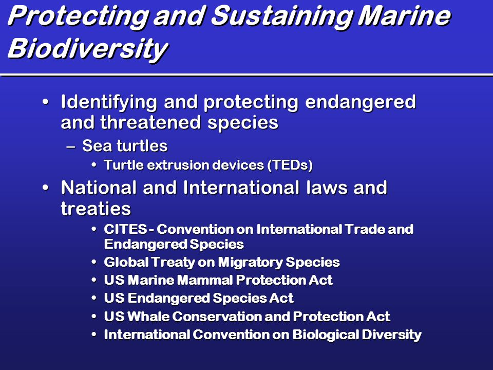 marine protection and biodiversity in mexico Significant progress made in marine protection  impacts are vital to reverse biodiversity  federal government to increase marine protection in canada.
