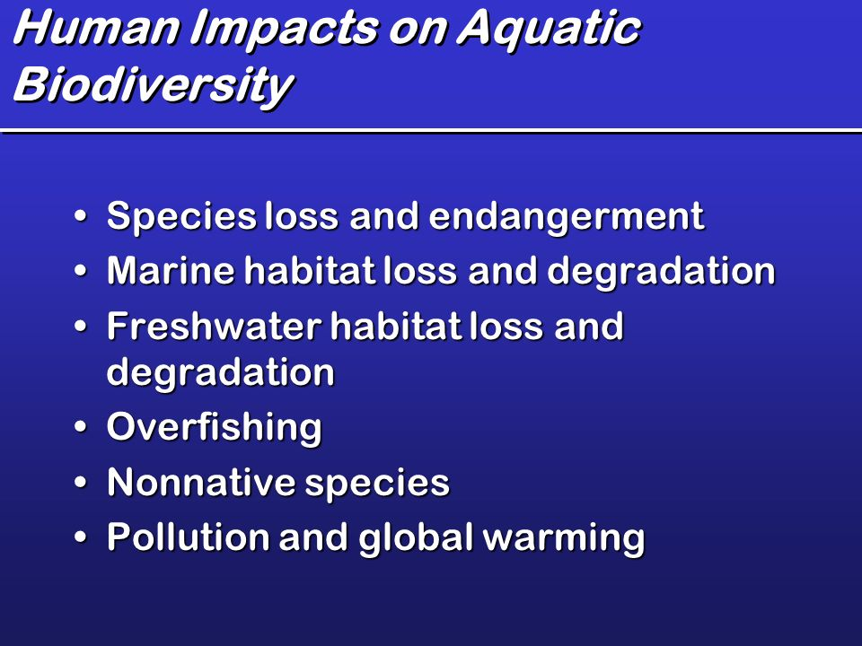 global warming affects biodiversity essay Biological diversity encompasses microorganism, plants, animals and  ecosystems such  which has occurred due to the impact of human beings on  the environment  global warming is also becoming a major cause for loss of  biodiversity.