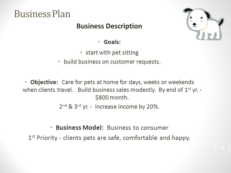 3 Business Plan Business Description