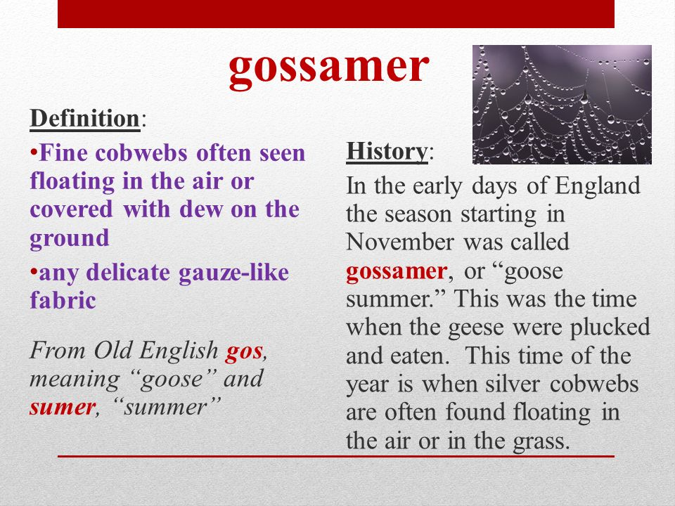 Accolade history definition ppt download for Soil meaning in english