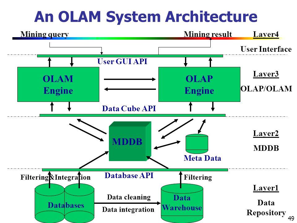 An OLAM System Architecture