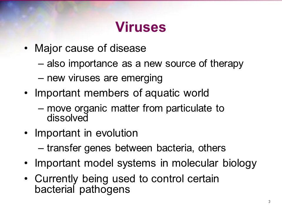 Viruses Major cause of disease Important members of aquatic world