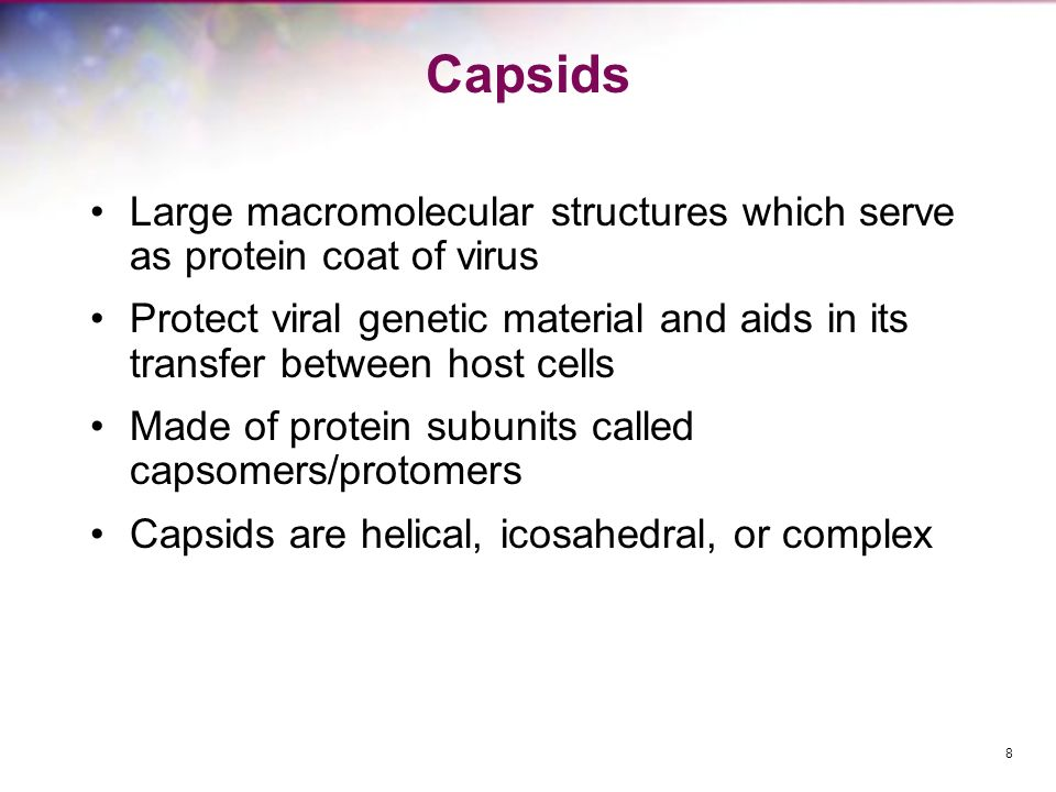 Capsids Large macromolecular structures which serve as protein coat of virus.