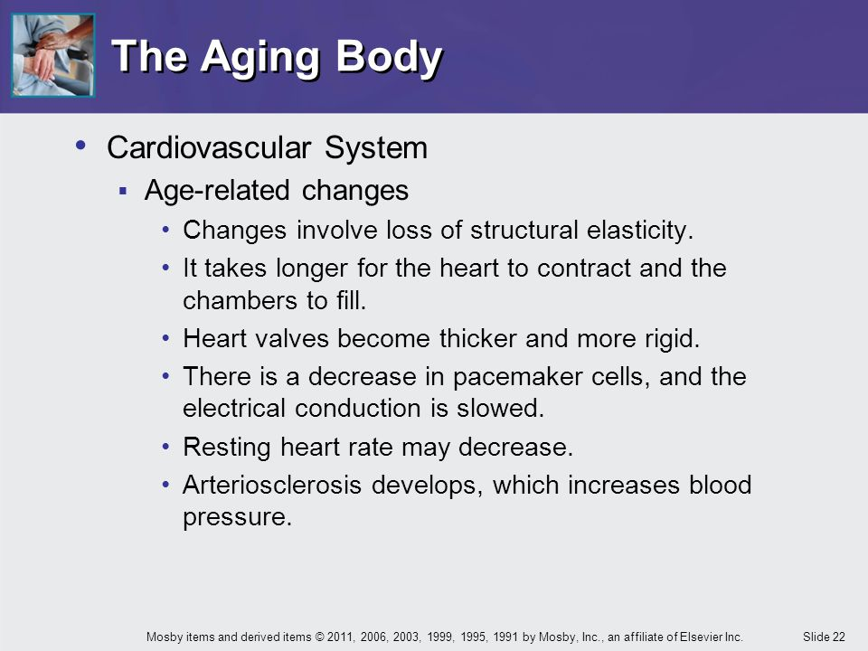 age related changes that occur in the cardiovascular system Normal aging & age-related changes  central nervous system changes:  cardiovascular changes: heart which initiate the heart beat.