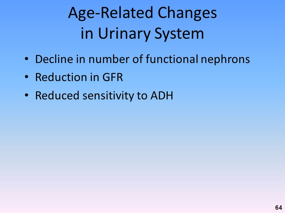 Age-Related Changes in Urinary System