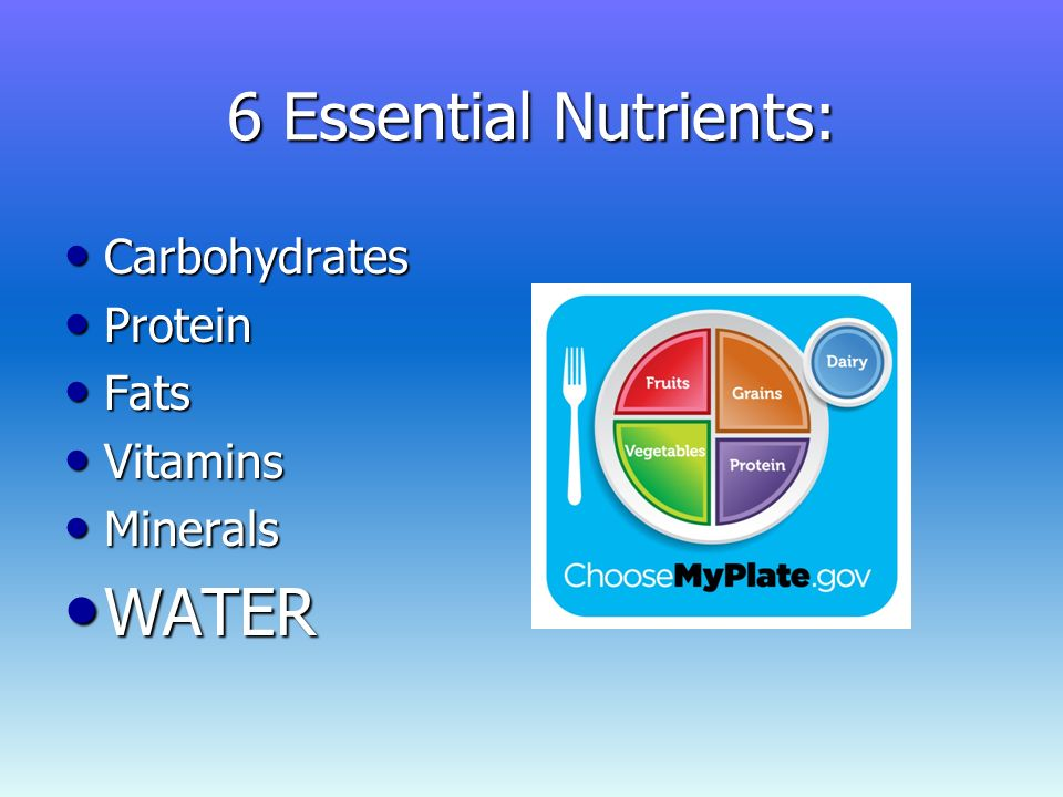ilab water an overlooked essential Sci 228 week 5 ilab to purchase this tutorial visit here: the title of your presentation is water: an overlooked essential nutrient a law firm has requested that you introduce yourself, explain why you are at the firm.