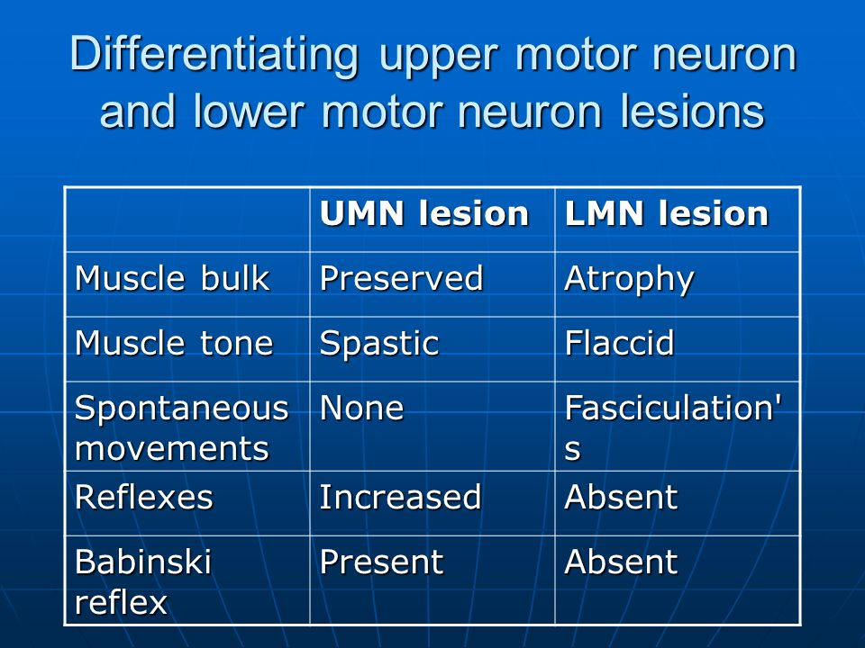 Download Clinical And Molecular Aspects Of Motor Neuron