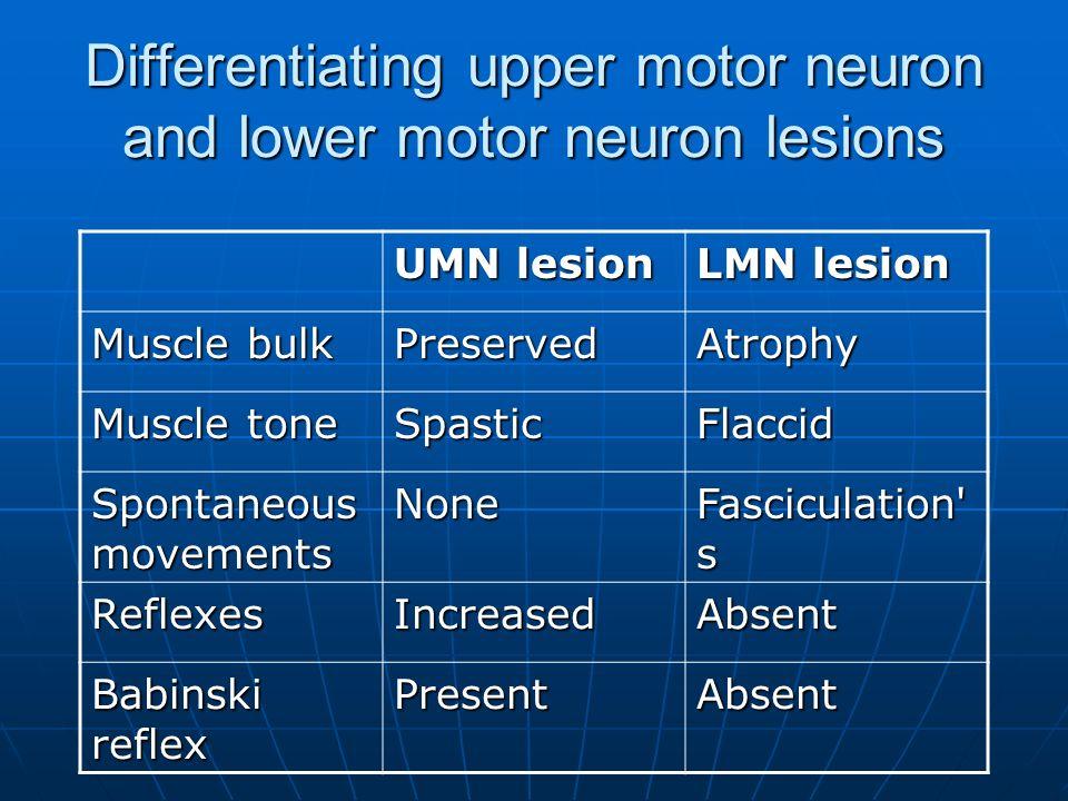 upper motor neuron lesion vs lower motor neuron lesion pdf