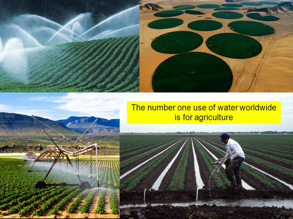 The number one use of water worldwide is for agriculture