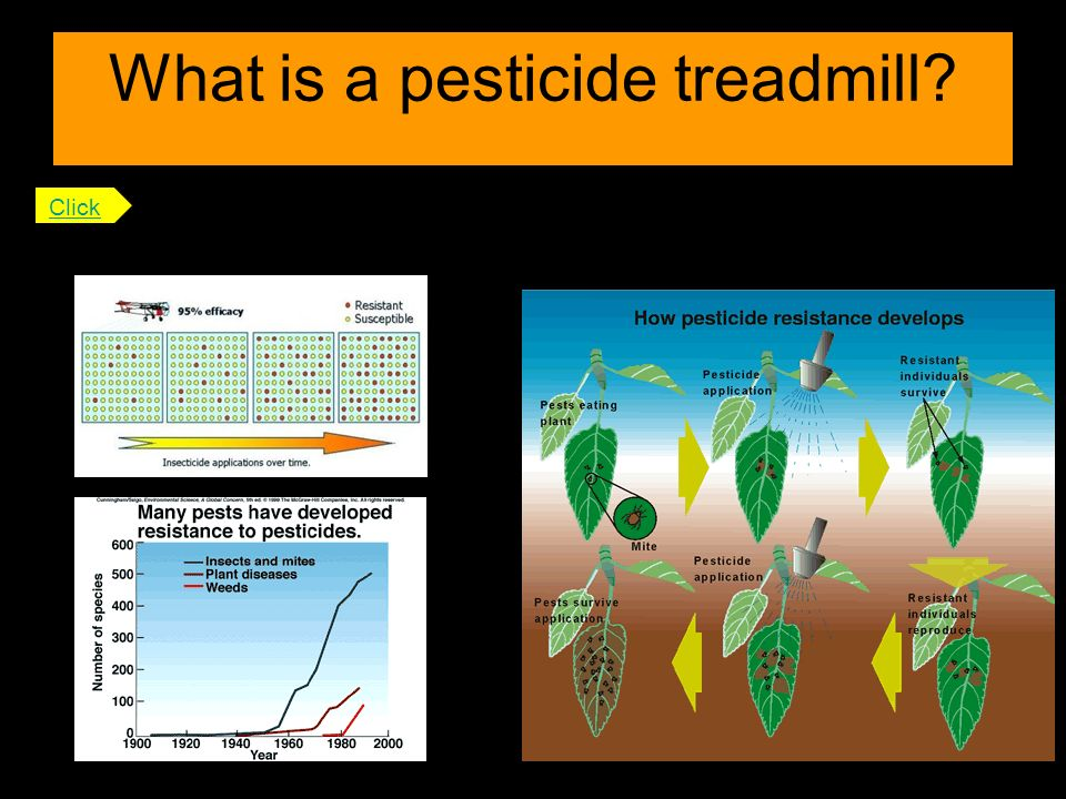 What is a pesticide treadmill