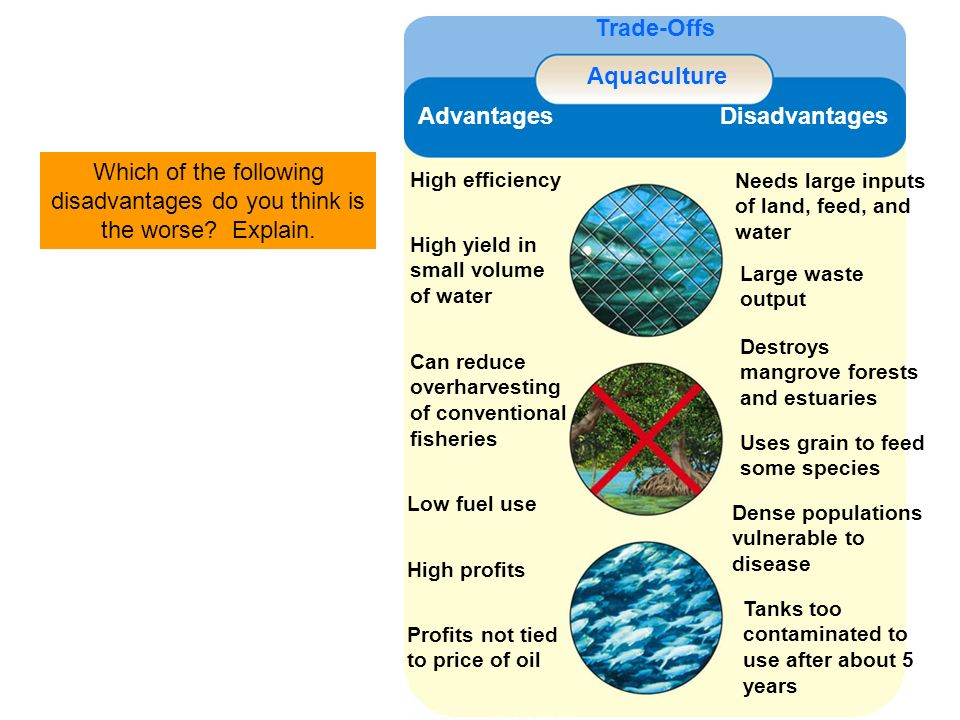 Trade-Offs Aquaculture Advantages Disadvantages