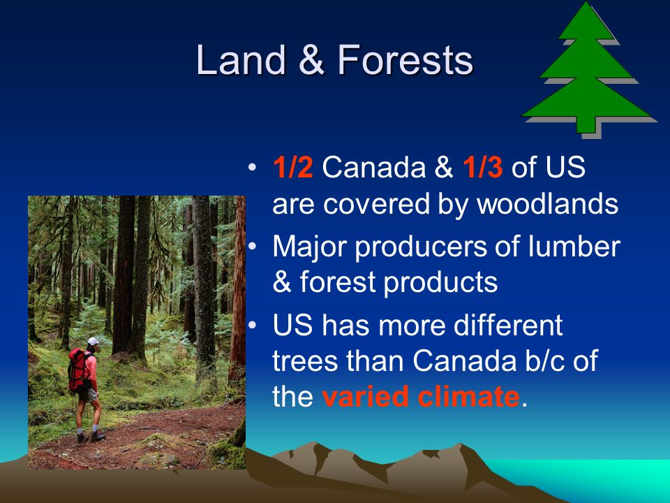 Land & Forests 1/2 Canada & 1/3 of US are covered by woodlands