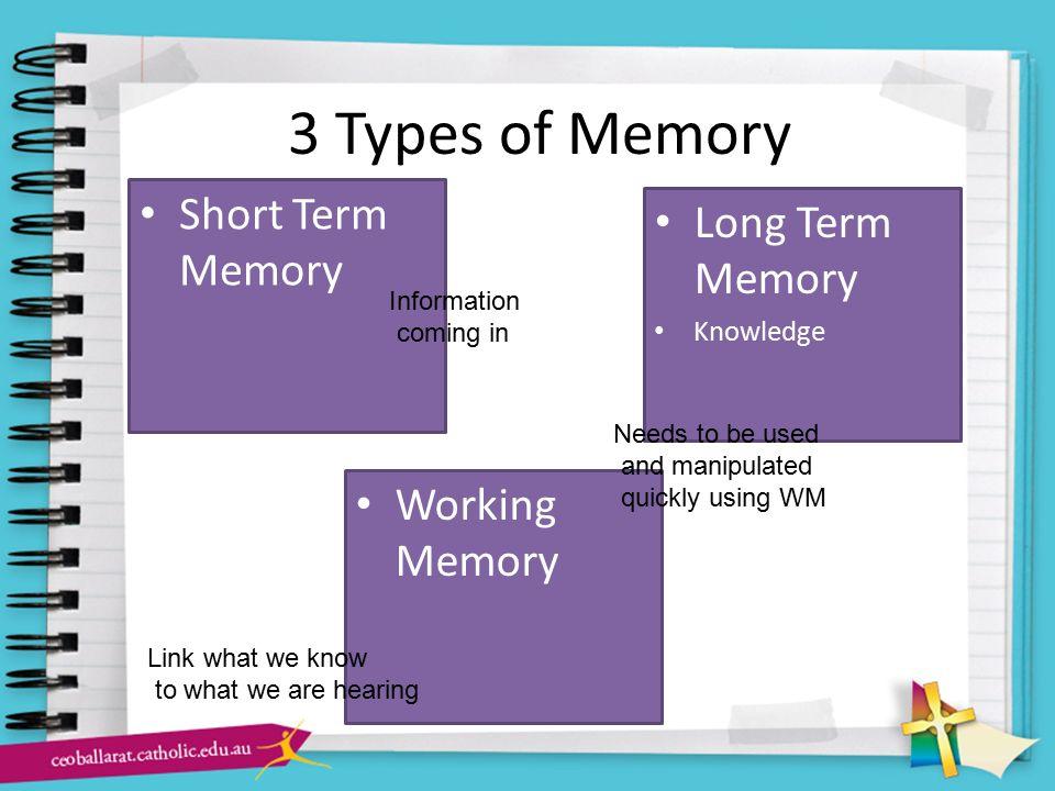 3 Types of Memory Short Term Memory Long Term Memory Working Memory