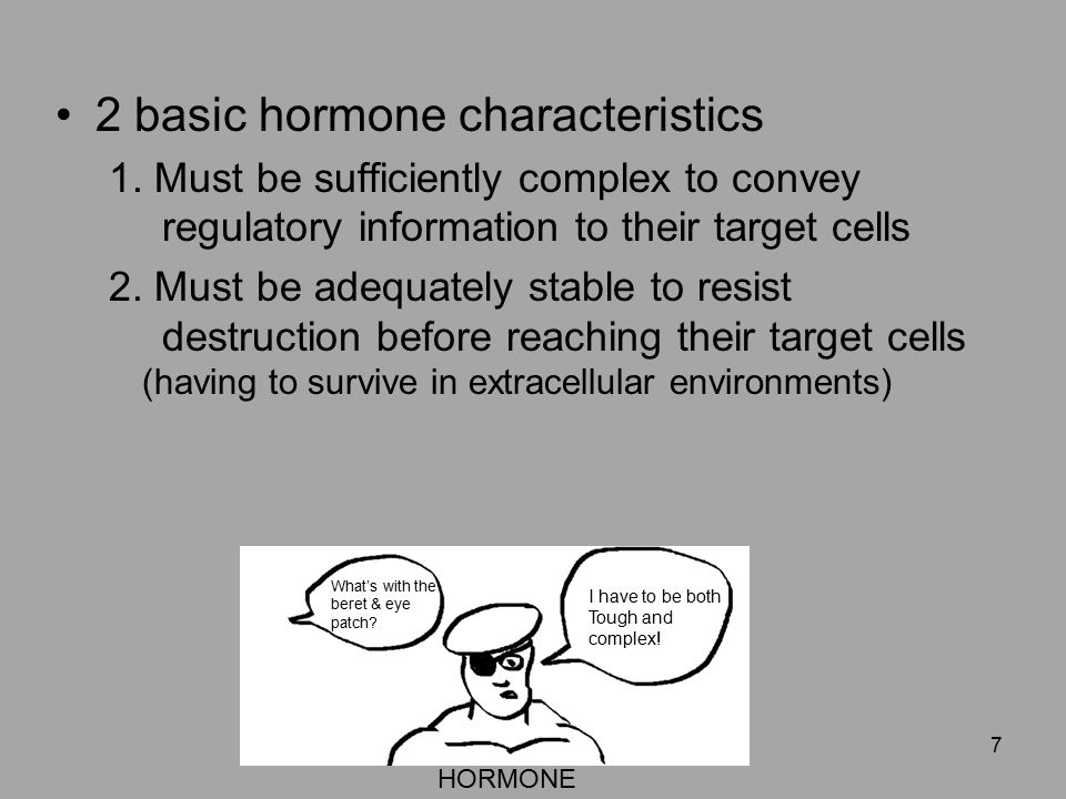 The Endocrine System Chapter Ppt Download