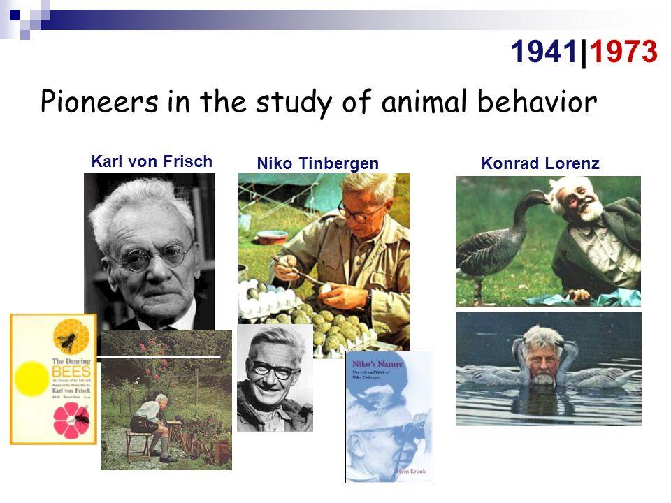 Grants & Awards - Animal Behavior Society