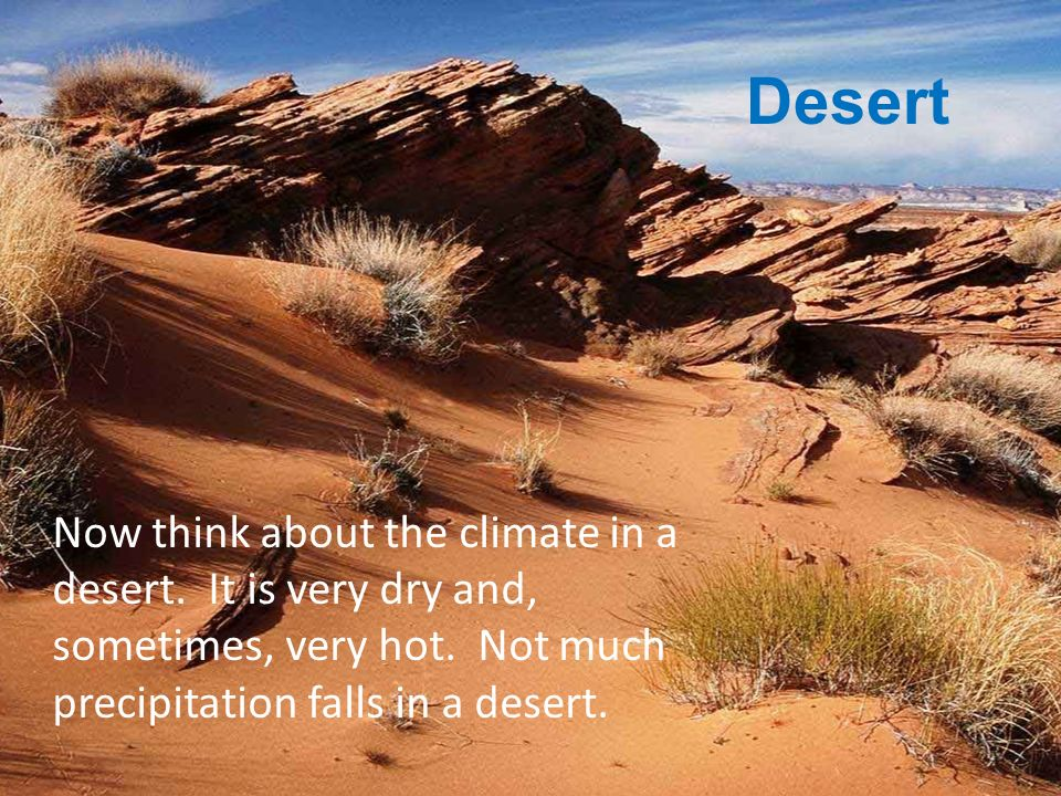 Desert Now think about the climate in a desert. It is very dry and, sometimes, very hot.
