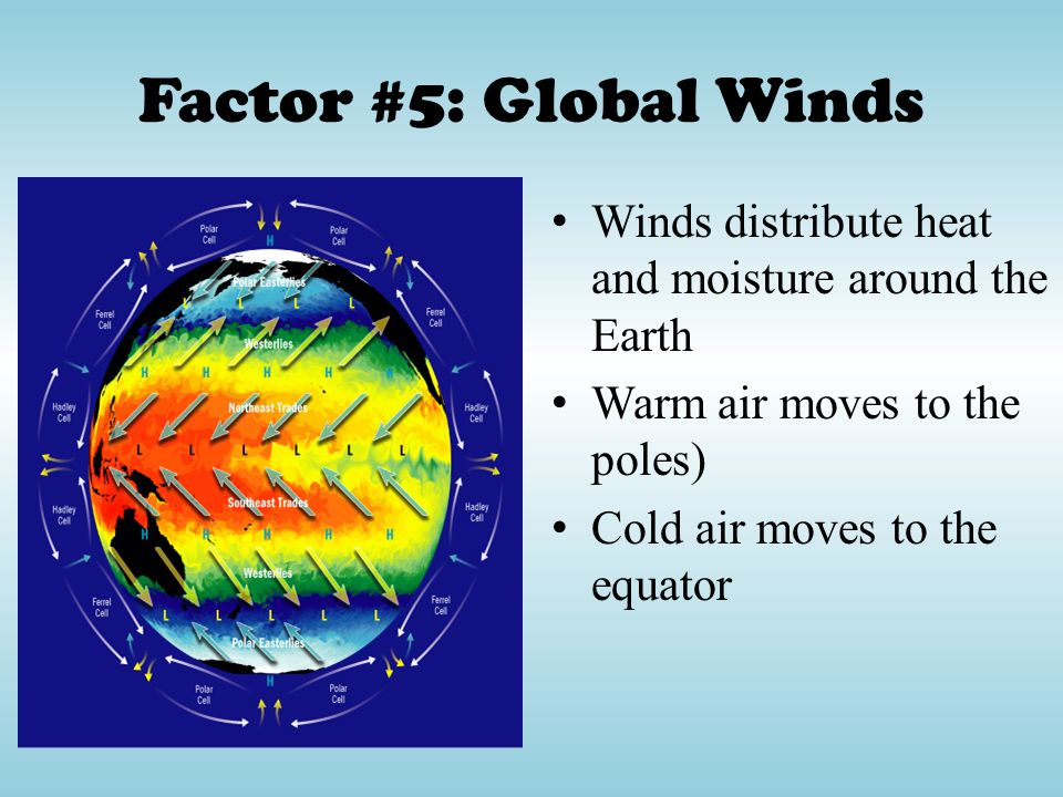 Factor #5: Global Winds Winds distribute heat and moisture around the Earth. Warm air moves to the poles)