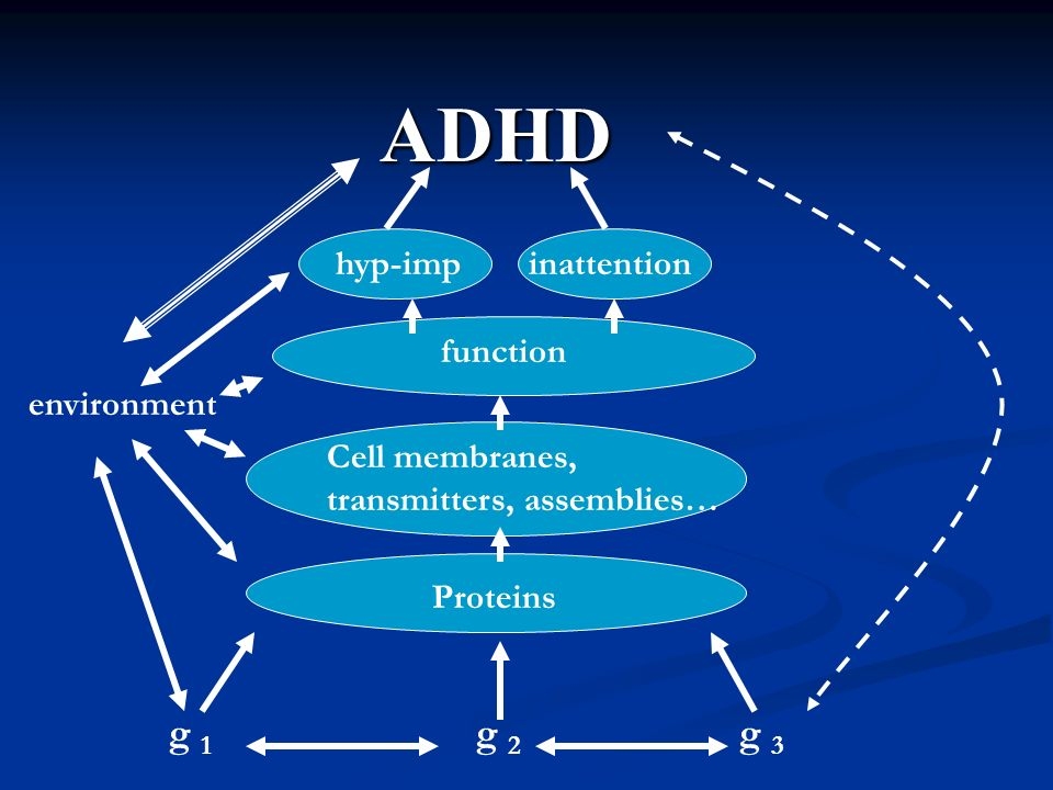 ADHD g 1 g 2 g 3 hyp-imp inattention function environment
